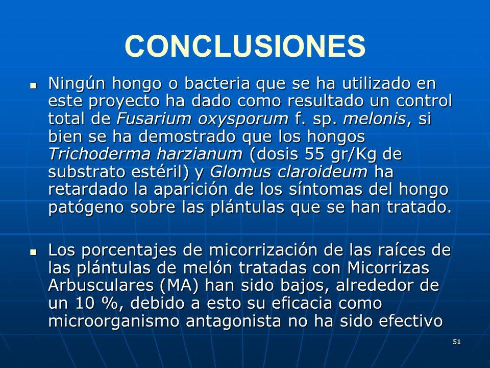 51 CONCLUSIONES Ningún hongo o bacteria que se ha utilizado en este proyecto ha dado como resultado un control total de Fusarium oxysporum f. sp. melo