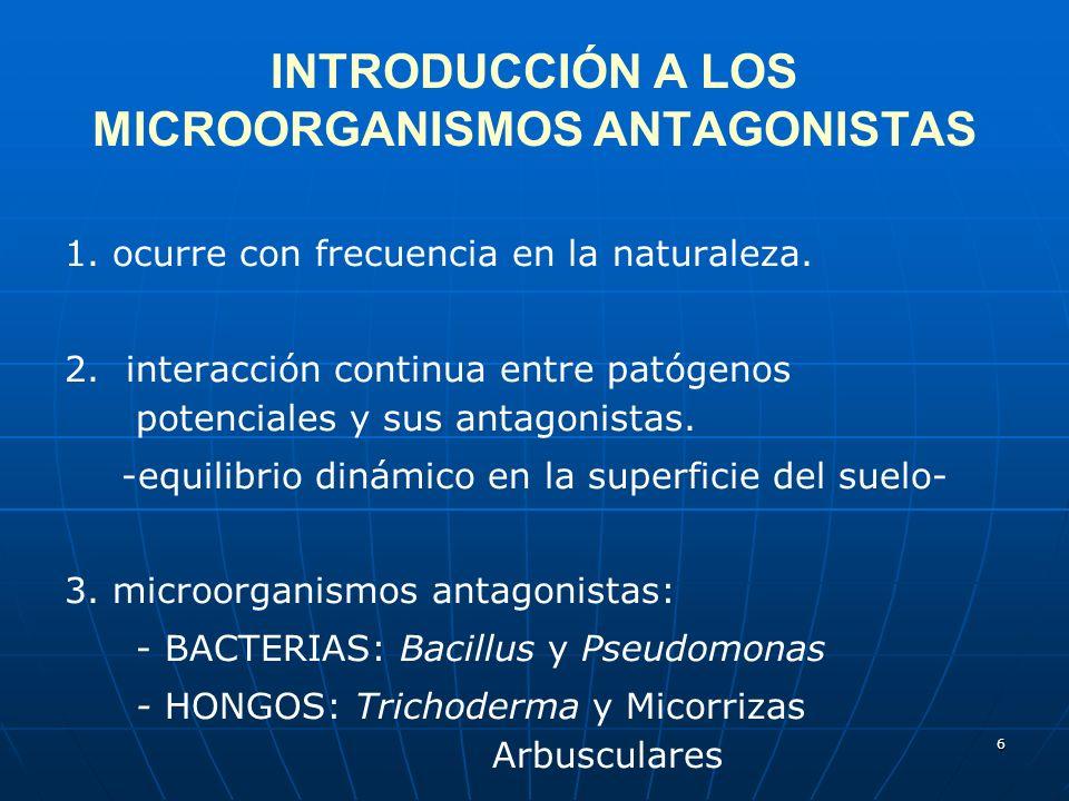 6 INTRODUCCIÓN A LOS MICROORGANISMOS ANTAGONISTAS 1. ocurre con frecuencia en la naturaleza. 2. interacción continua entre patógenos potenciales y sus
