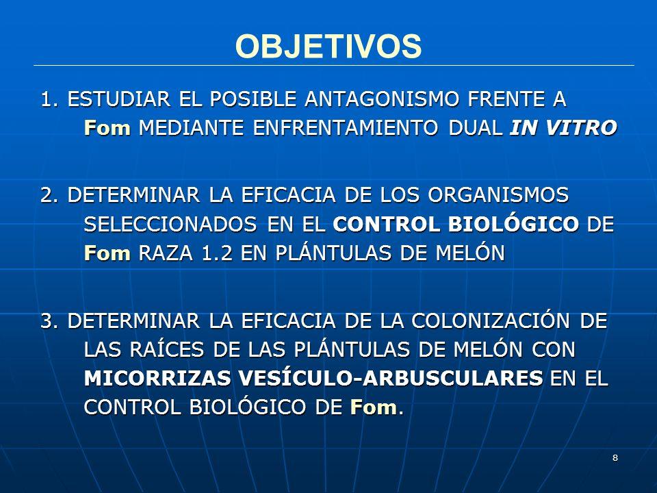 8 OBJETIVOS 1. ESTUDIAR EL POSIBLE ANTAGONISMO FRENTE A Fom MEDIANTE ENFRENTAMIENTO DUAL IN VITRO 2. DETERMINAR LA EFICACIA DE LOS ORGANISMOS SELECCIO
