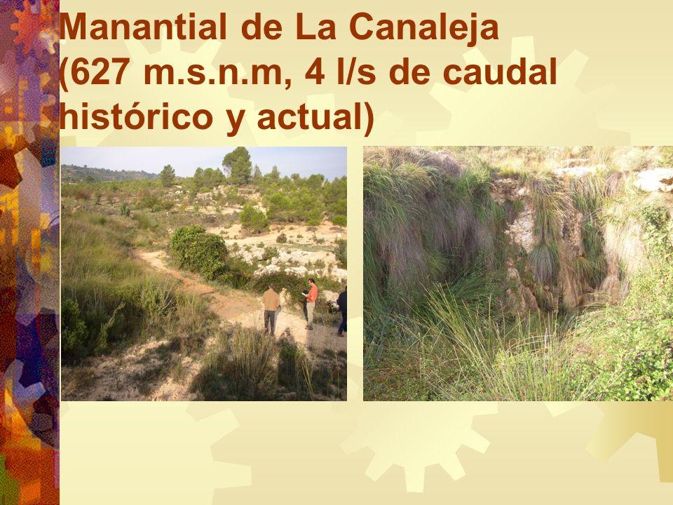 Manantial de La Canaleja (627 m.s.n.m, 4 l/s de caudal histórico y actual)
