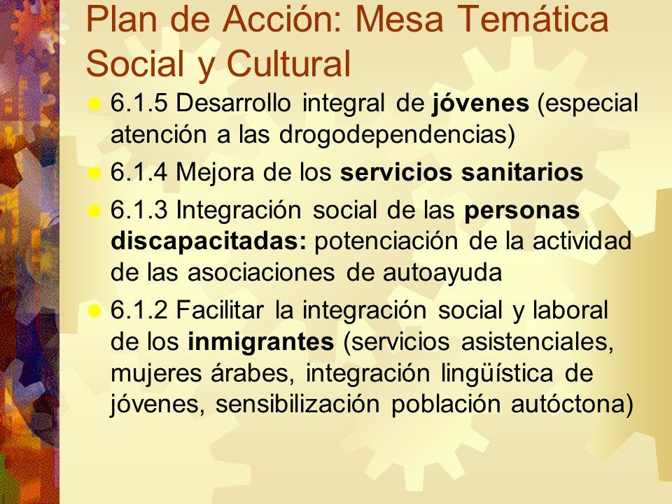 Plan de Acción: Mesa Temática Social y Cultural 6.1.5 Desarrollo integral de jóvenes (especial atención a las drogodependencias) 6.1.4 Mejora de los s