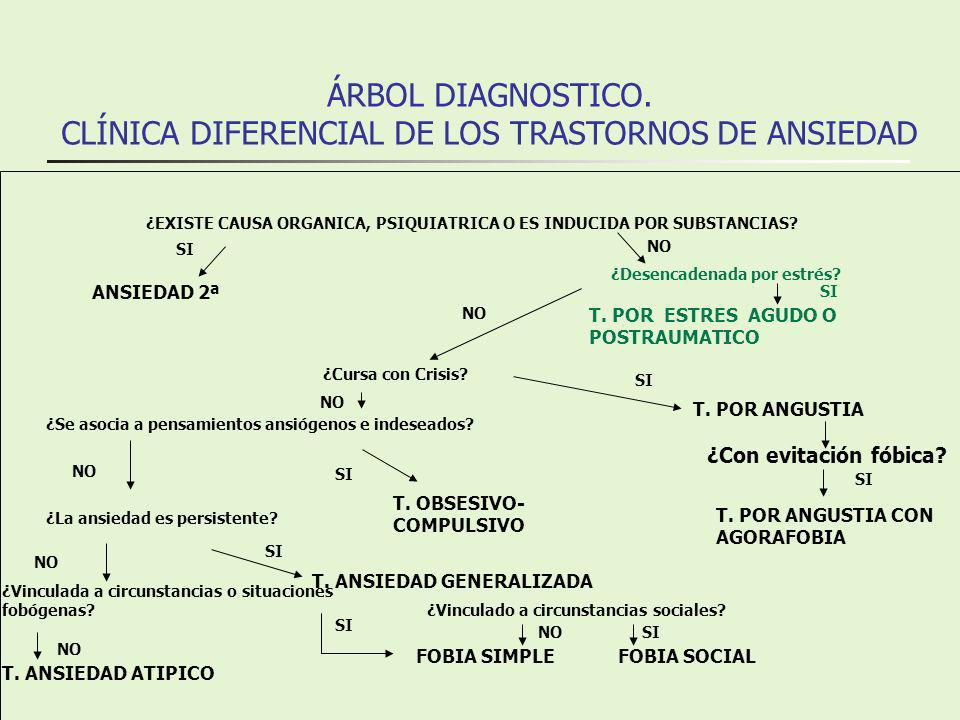 ÁRBOL DIAGNOSTICO.