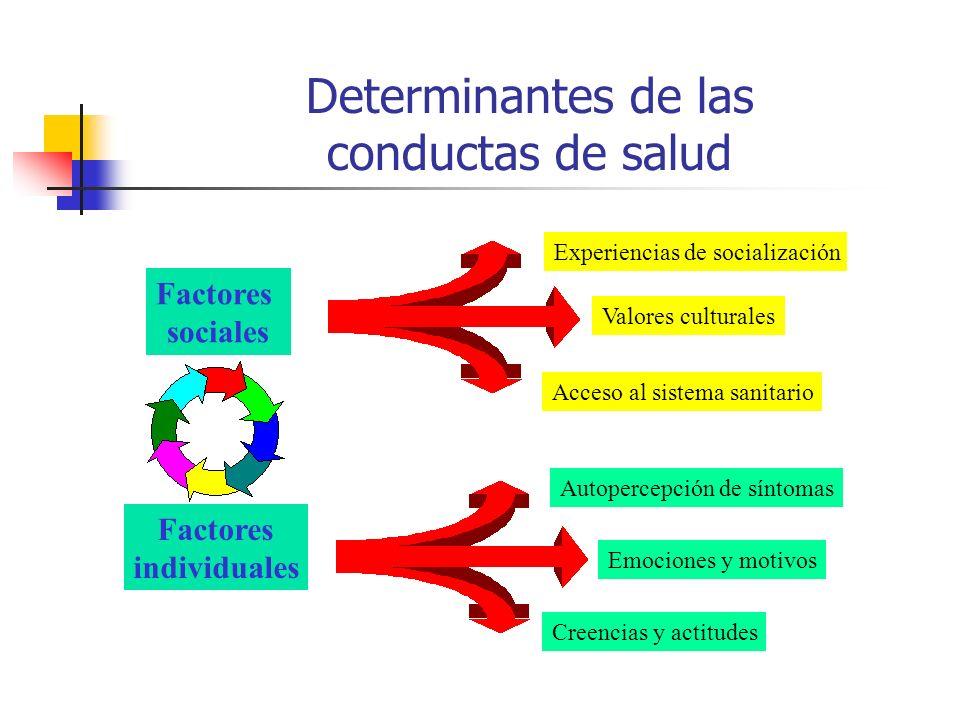 Determinantes de las conductas de salud Factores sociales Factores individuales Experiencias de socialización Valores culturales Acceso al sistema san