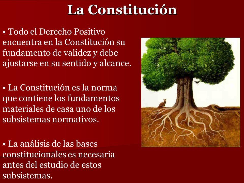 La Constitución Todo el Derecho Positivo encuentra en la Constitución su fundamento de validez y debe ajustarse en su sentido y alcance. La Constituci