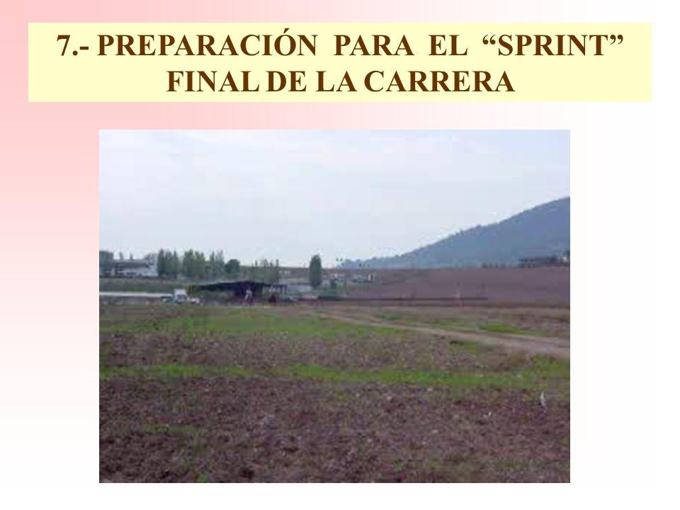 6.- INTEGRIDAD DE LOS MECANISMOS TERMORREGULADORES RADIACION EVAPORACION CONDUCCION CONVECCION