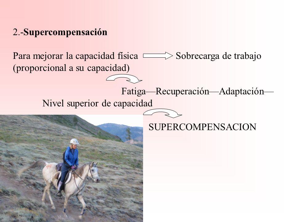 PRINCIPIOS DEL ENTRENAMIENTO 1.-Especificidad. (Precedida de un entrenamiento genérico que favorezca un desarrollo armónico). Carrera (Resistencia- Ve