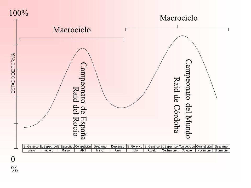 80% 0%0% Raid Nacional C ESTADO DE FORMA Promoción 60 km Macrociclo Promoción 50 km Promoción 40 km Evaluación: Test de Ejercicio