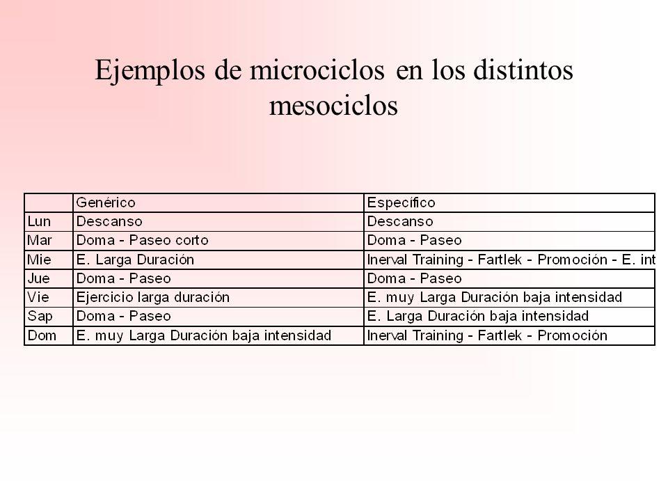 Distribución cargas de trabajo en mesociclos (genéricos-específicos) Microciclo Evaluación Microciclo de descanso