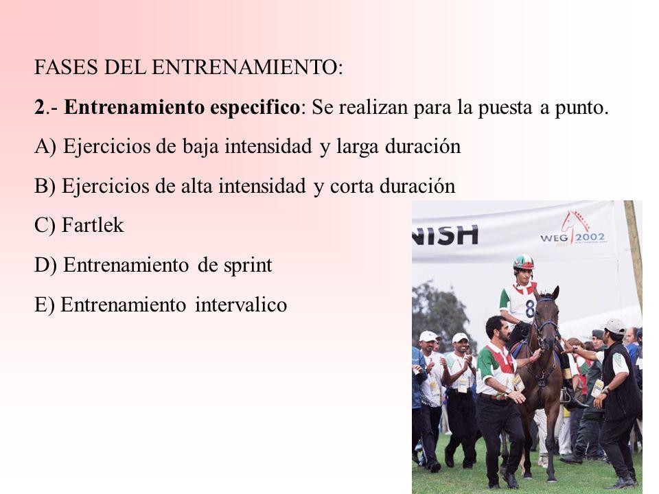 FASES DEL ENTRENAMIENTO: 1.- Entrenamiento general básico -Adiestramiento del animal -Conseguir resistencia orgánica -Evitar situaciones de estrés (pr