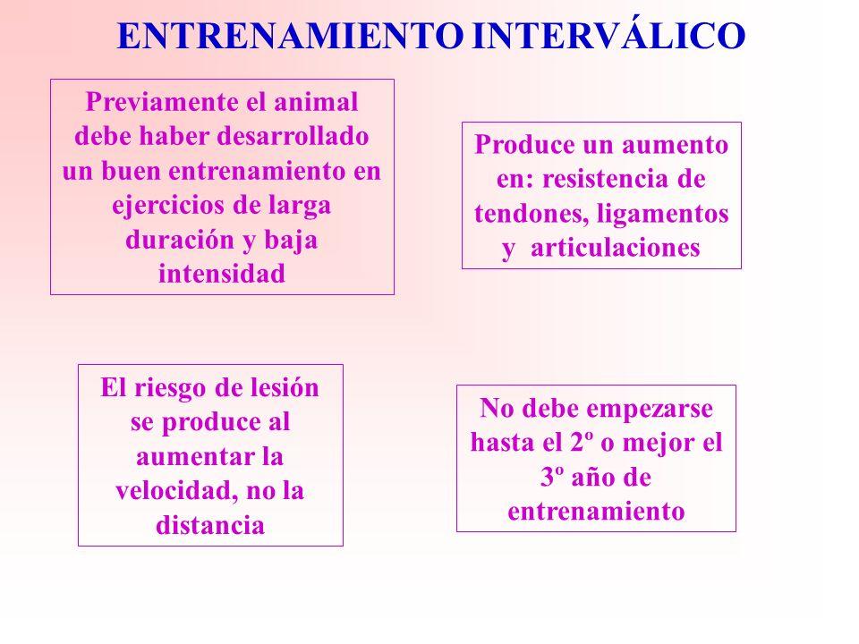 ENTRENAMIENTO INTERVALICO -Consiste en repeticiones de ejercicios de corta duración a intensidad submaxima separados por periodos de recuperación parc