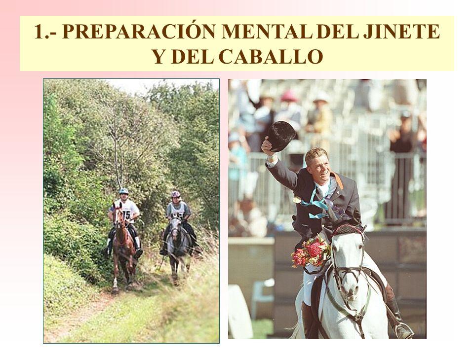 1.- PREPARACIÓN MENTAL DEL JINETE Y DEL CABALLO 2.- DESARROLLO LOCOMOTOR 3.- ENTRENAMIENTO CARDIOVASCULAR 4.- MANTENIMIENTO DE UNOS NIVELES ADECUADOS