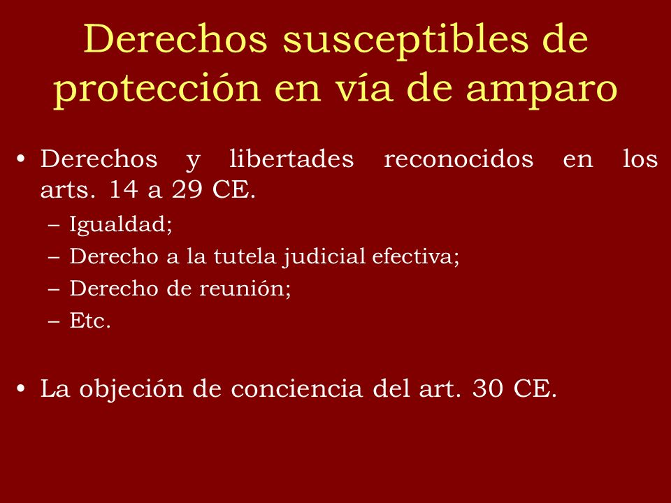 Derechos susceptibles de protección en vía de amparo Derechos y libertades reconocidos en los arts. 14 a 29 CE. –Igualdad; –Derecho a la tutela judici