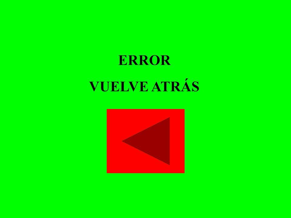 ERROR VUELVE ATRÁS