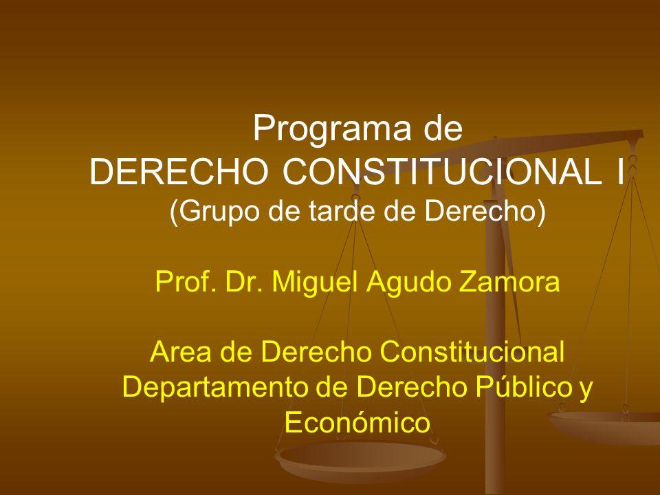 Programa de DERECHO CONSTITUCIONAL I (Grupo de tarde de Derecho) Prof. Dr. Miguel Agudo Zamora Area de Derecho Constitucional Departamento de Derecho