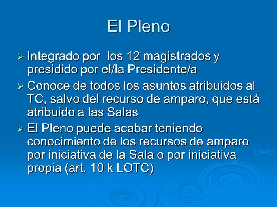 El Pleno Integrado por los 12 magistrados y presidido por el/la Presidente/a Integrado por los 12 magistrados y presidido por el/la Presidente/a Conoc