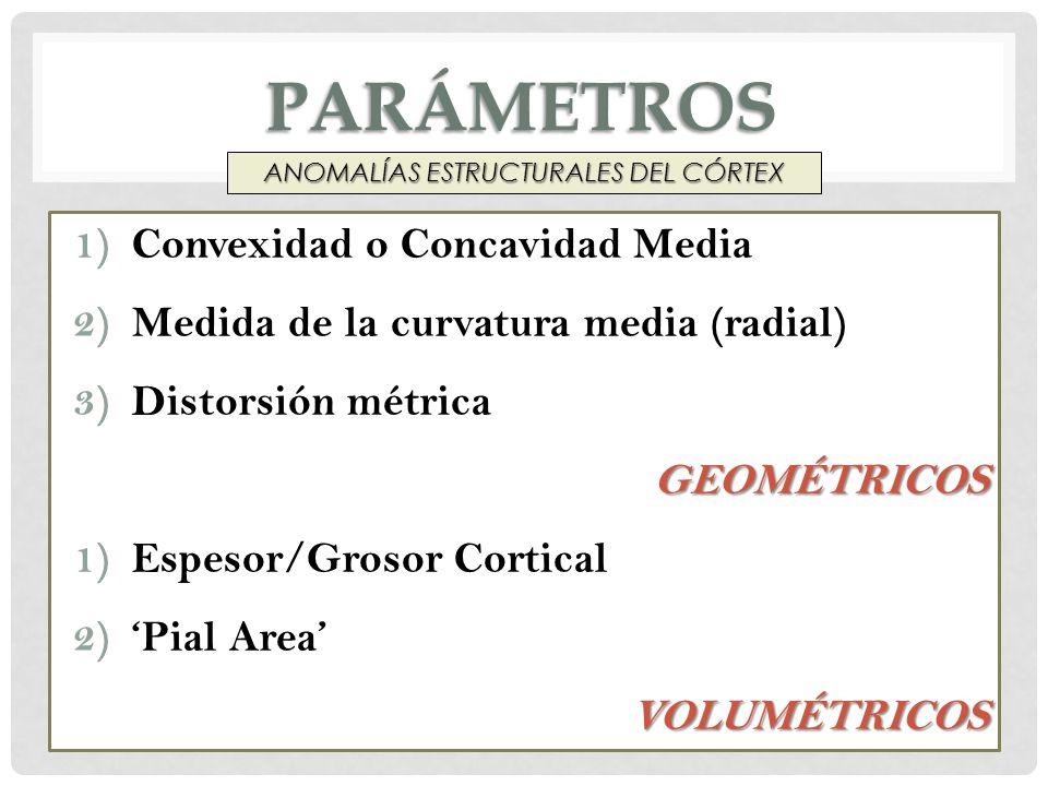 PARÁMETROS 1)Convexidad o Concavidad Media 2)Medida de la curvatura media (radial) 3)Distorsión métricaGEOMÉTRICOS 1)Espesor/Grosor Cortical 2)Pial Ar