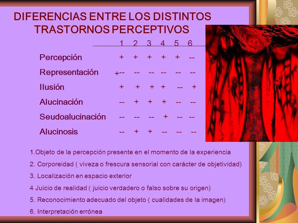 DIFERENCIAS ENTRE LOS DISTINTOS TRASTORNOS PERCEPTIVOS 1.Objeto de la percepción presente en el momento de la experiencia 2.