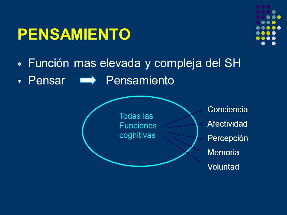 PENSAMIENTO Función mas elevada y compleja del SH Pensar Pensamiento Todas las Funciones cognitivas Conciencia Afectividad Percepción Memoria Voluntad