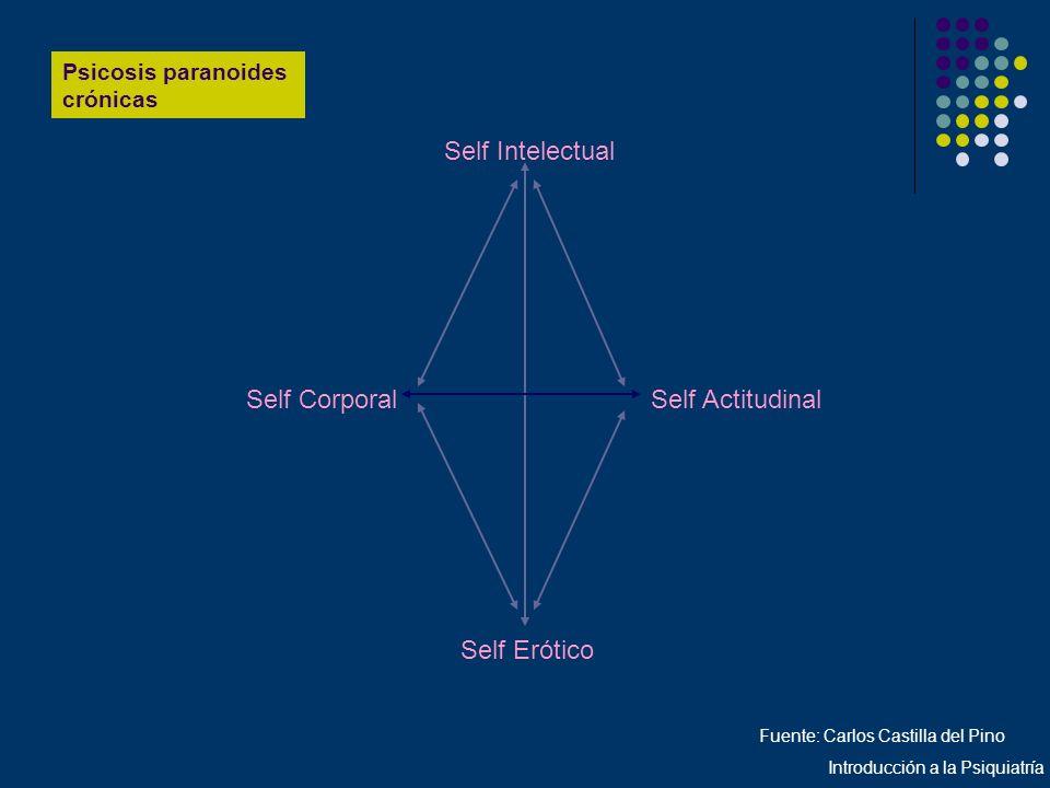 Psicosis paranoides crónicas Self Intelectual Self CorporalSelf Actitudinal Self Erótico Fuente: Carlos Castilla del Pino Introducción a la Psiquiatrí