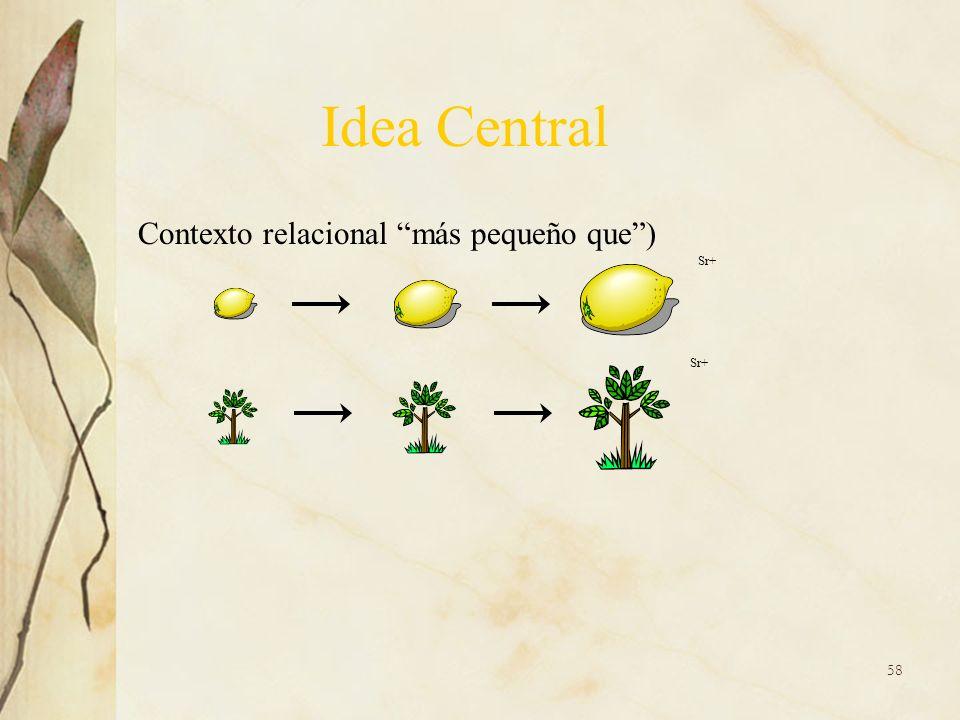 Contexto relacional más pequeño que) Sr+ Idea Central 58