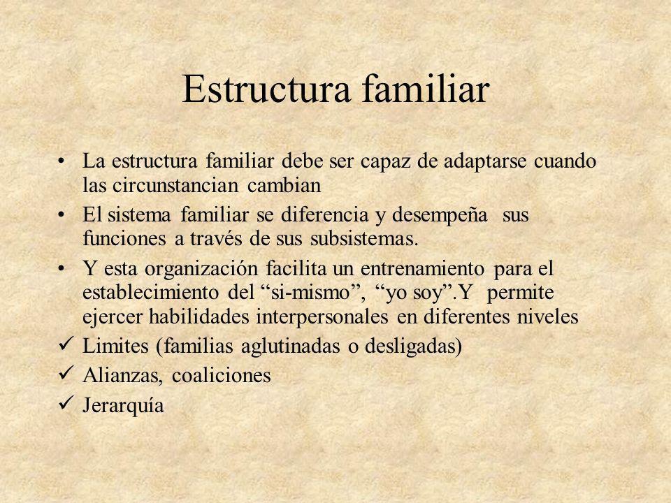Estructura familiar La estructura familiar debe ser capaz de adaptarse cuando las circunstancian cambian El sistema familiar se diferencia y desempeña
