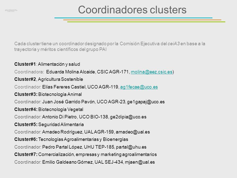 Coordinadores clusters Cada cluster tiene un coordinador designado por la Comisión Ejecutiva del ceiA3 en base a la trayectoria y méritos científicos