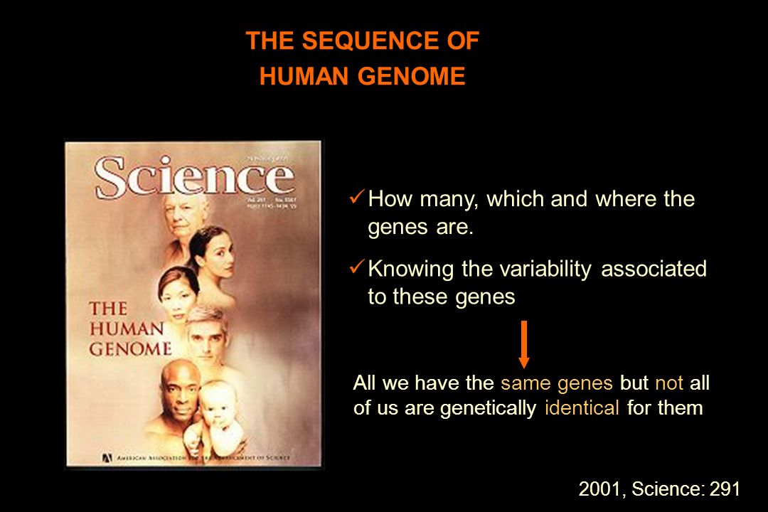 THE SEQUENCE OF HUMAN GENOME How many, which and where the genes are. Knowing the variability associated to these genes All we have the same genes but