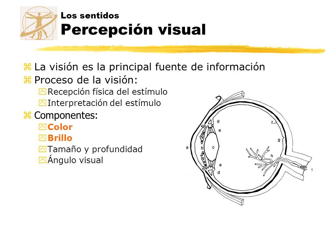 Los sentidos Percepción visual zLa visión es la principal fuente de información zProceso de la visión: yRecepción física del estímulo yInterpretación