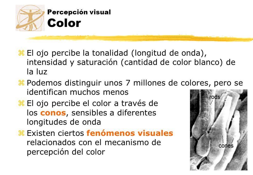 Percepción visual Color zEl ojo percibe la tonalidad (longitud de onda), intensidad y saturación (cantidad de color blanco) de la luz zPodemos disting
