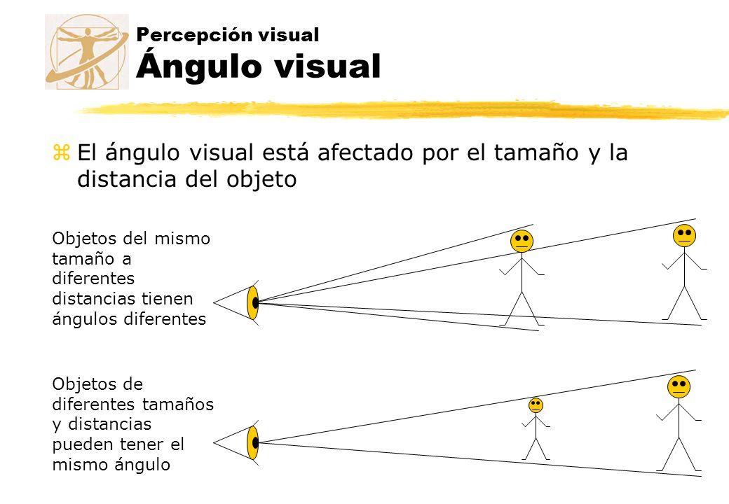 Percepción visual Ángulo visual zEl ángulo visual está afectado por el tamaño y la distancia del objeto Objetos del mismo tamaño a diferentes distanci