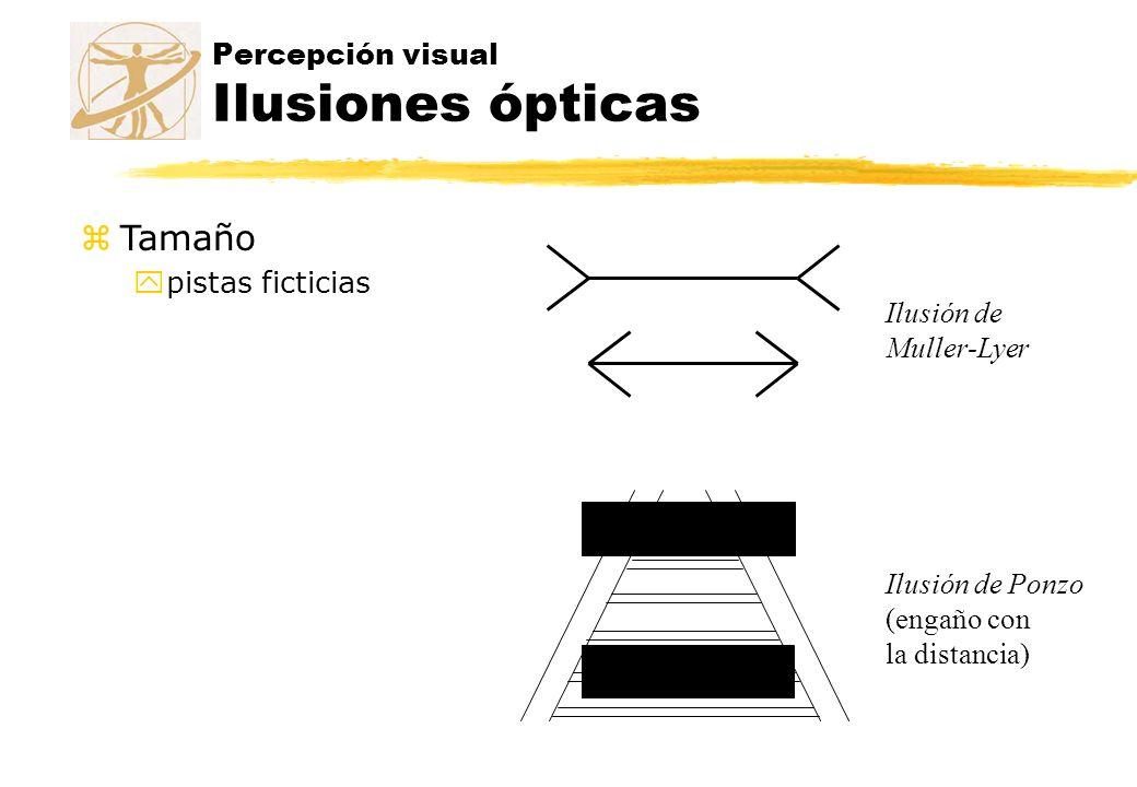 Percepción visual Ilusiones ópticas Ilusión de Muller-Lyer Ilusión de Ponzo (engaño con la distancia) zTamaño ypistas ficticias