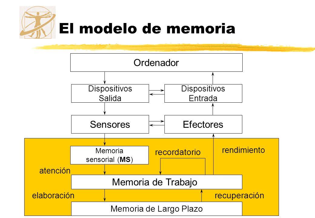 El modelo de memoria Ordenador Dispositivos Salida Dispositivos Entrada SensoresEfectores Memoria sensorial (MS) atención Memoria de Trabajo Memoria d