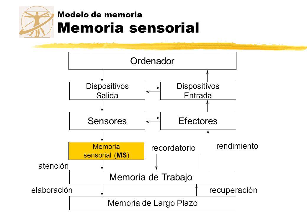 Modelo de memoria Memoria sensorial Ordenador Dispositivos Salida Dispositivos Entrada SensoresEfectores Memoria sensorial (MS) atención Memoria de Tr
