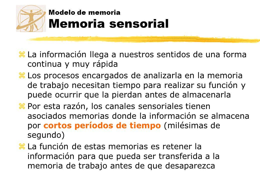 Modelo de memoria Memoria sensorial zLa información llega a nuestros sentidos de una forma continua y muy rápida zLos procesos encargados de analizarl