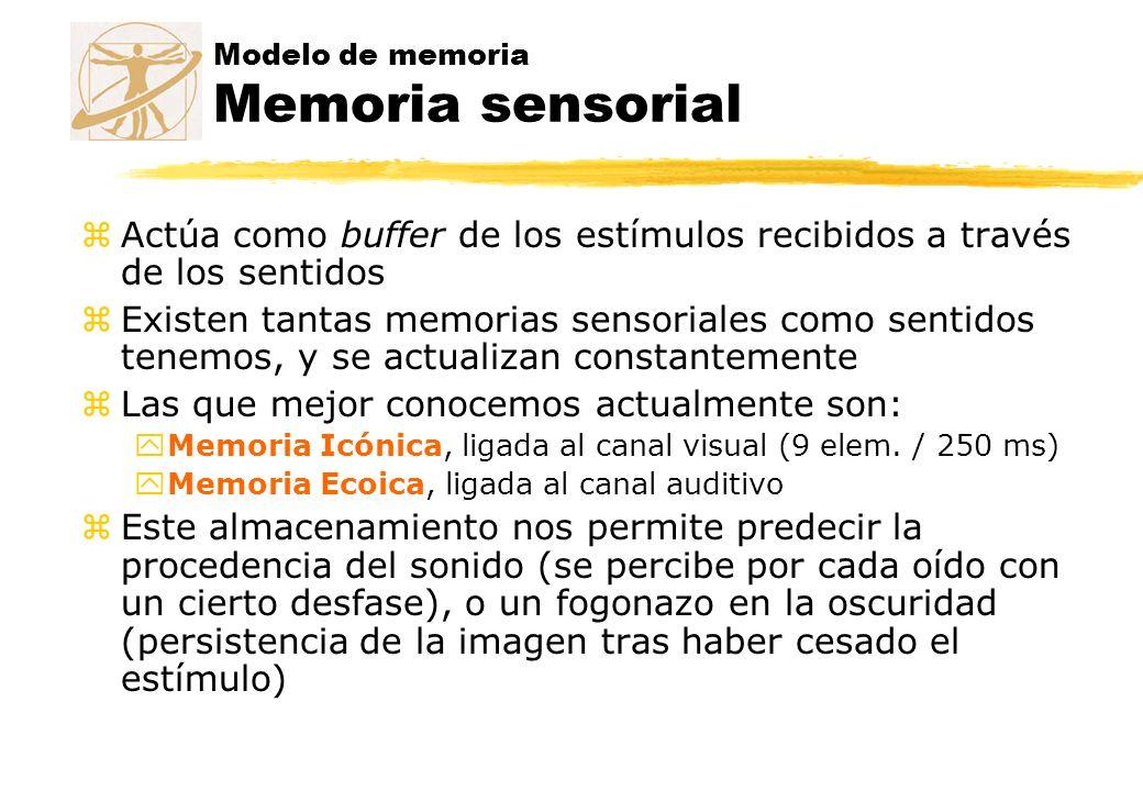 Modelo de memoria Memoria sensorial zActúa como buffer de los estímulos recibidos a través de los sentidos zExisten tantas memorias sensoriales como s