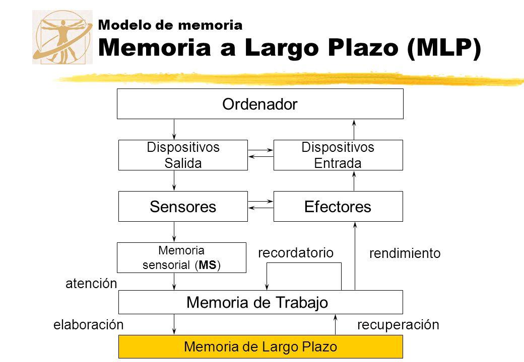 Modelo de memoria Memoria a Largo Plazo (MLP) Ordenador Dispositivos Salida Dispositivos Entrada SensoresEfectores Memoria sensorial (MS) atención Mem