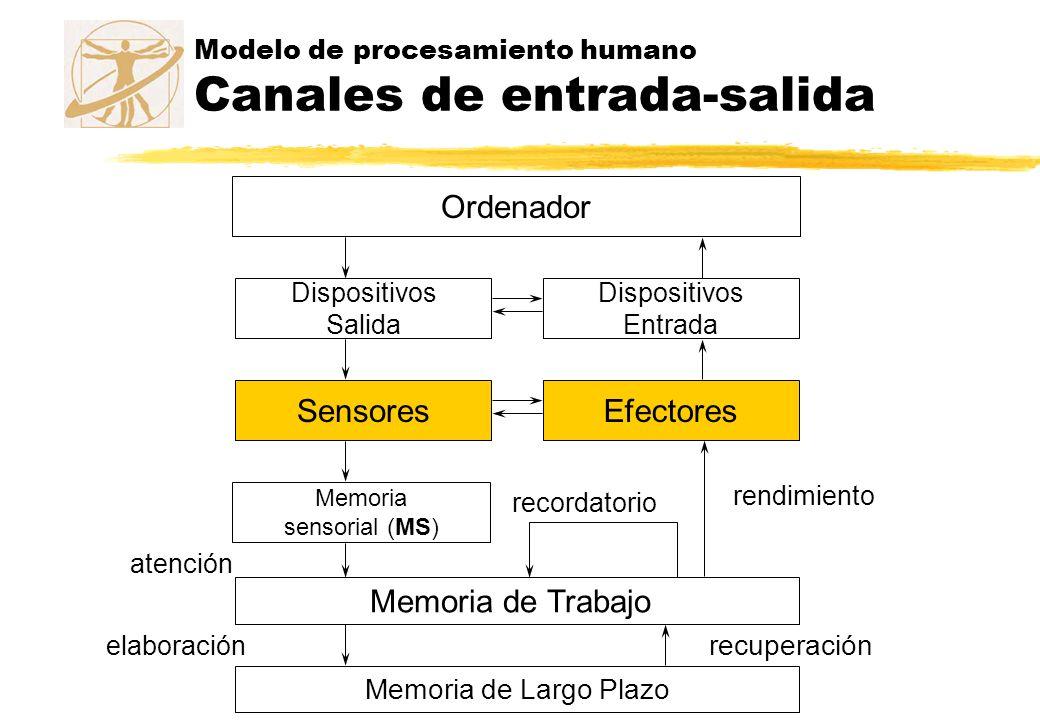 Modelo de memoria Memoria sensorial zActúa como buffer de los estímulos recibidos a través de los sentidos zExisten tantas memorias sensoriales como sentidos tenemos, y se actualizan constantemente zLas que mejor conocemos actualmente son: yMemoria Icónica, ligada al canal visual (9 elem.