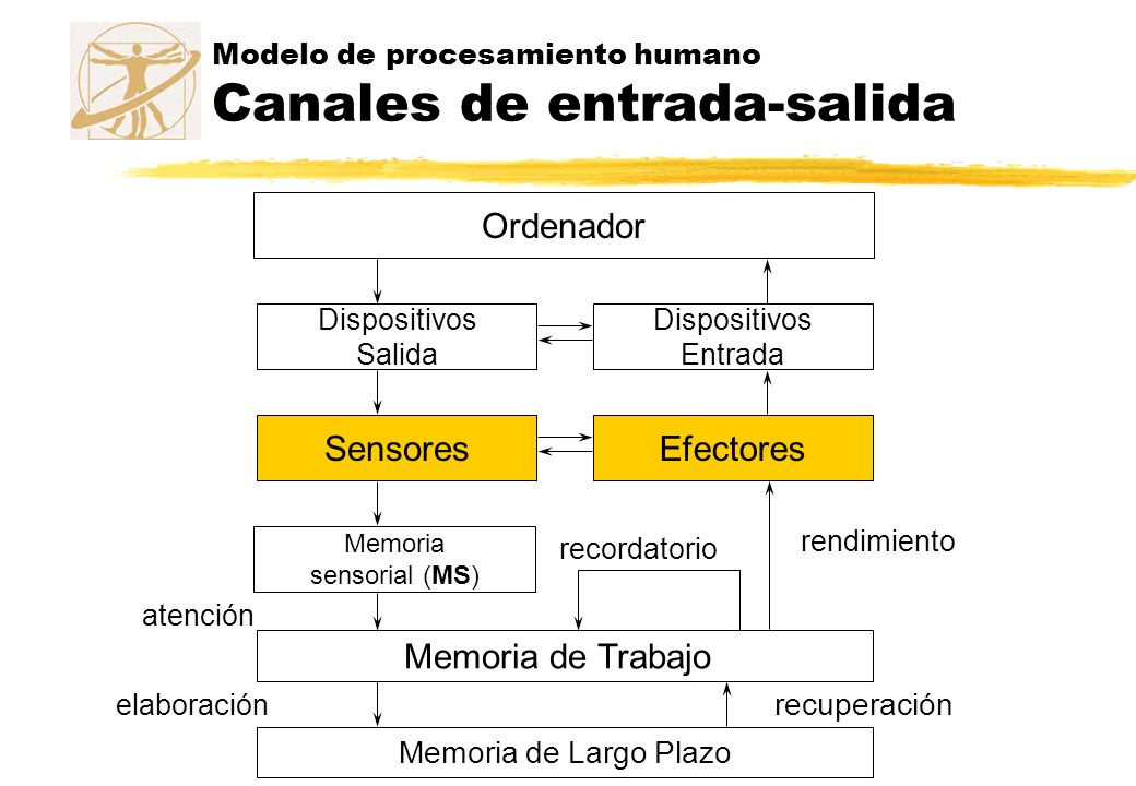 Ordenador Dispositivos Salida Dispositivos Entrada SensoresEfectores Memoria sensorial (MS) atención Memoria de Trabajo Memoria de Largo Plazo elabora
