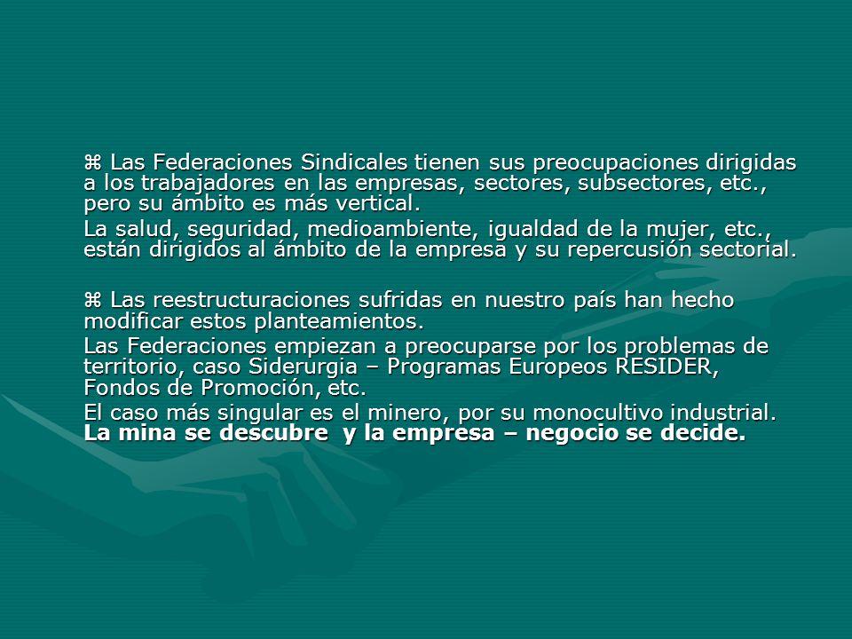 Las Federaciones Sindicales tienen sus preocupaciones dirigidas a los trabajadores en las empresas, sectores, subsectores, etc., pero su ámbito es más
