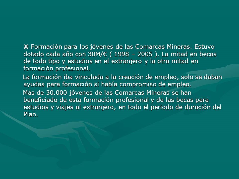 Formación para los jóvenes de las Comarcas Mineras. Estuvo dotado cada año con 30M/ ( 1998 – 2005 ). La mitad en becas de todo tipo y estudios en el e