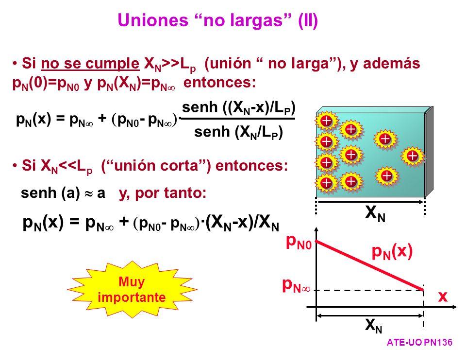 Si no se cumple X N >>L p (unión no larga), y además p N (0)=p N0 y p N (X N )=p N entonces: Uniones no largas (II) ATE-UO PN136 p N (x) = p N + p N0
