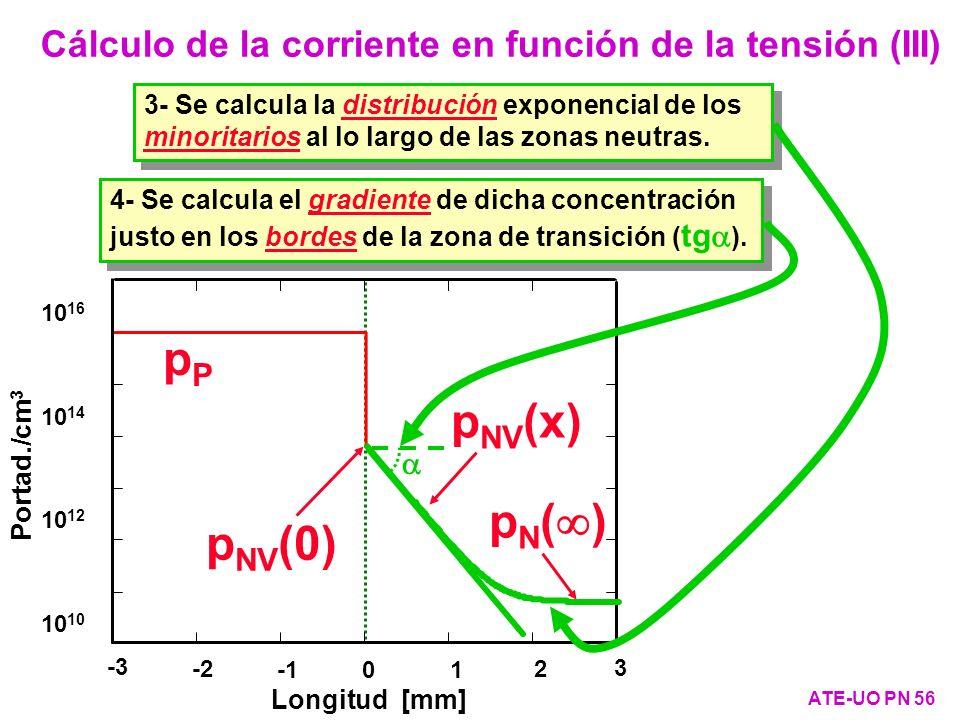 Cálculo de la corriente en función de la tensión (III) ATE-UO PN 56 10 10 12 10 14 10 16 pPpP p NV (x) Portad./cm 3 -3 -2 01 2 3 Longitud [mm] p NV (0