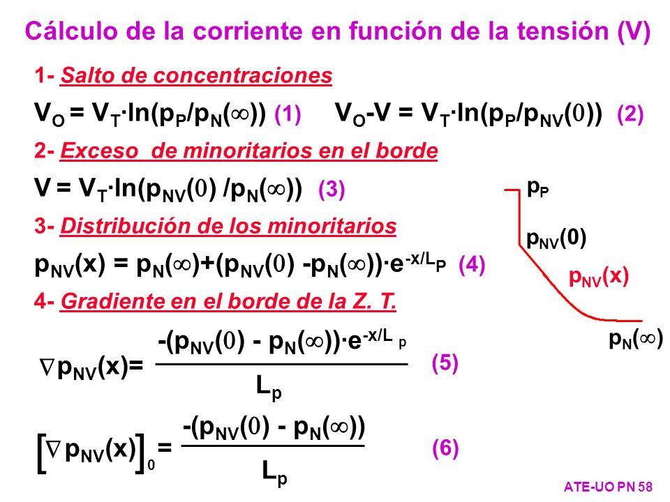 1- Salto de concentraciones V O = V T ·ln(p P /p N ( )) (1) V O -V = V T ·ln(p P /p NV ( )) (2) 2- Exceso de minoritarios en el borde V = V T ·ln(p NV
