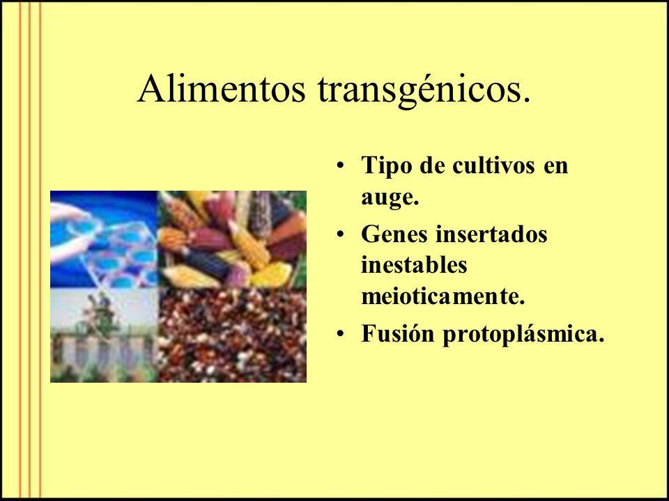 Alimentos transgénicos. Tipo de cultivos en auge. Genes insertados inestables meioticamente. Fusión protoplásmica.