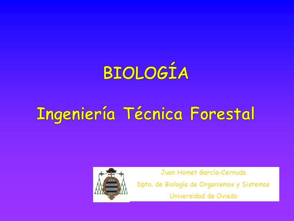 Juan Homet García-Cernuda Dpto. de Biología de Organismos y Sistemas Universidad de Oviedo