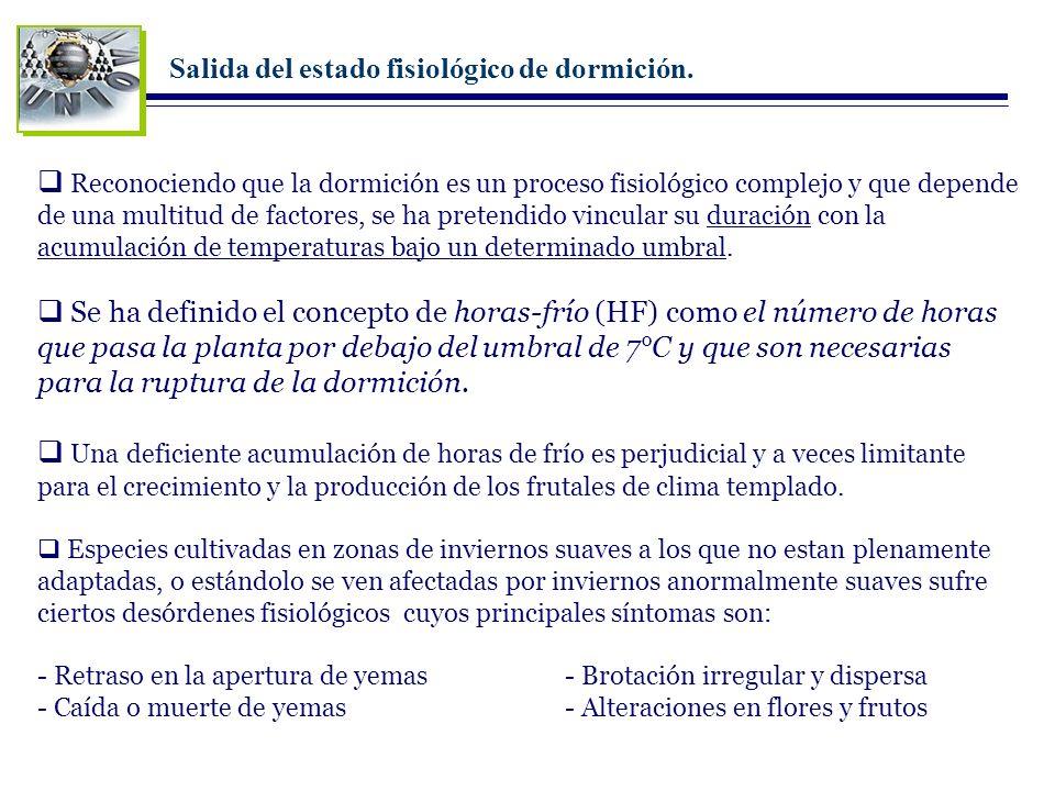 Tema 39 Fisiología de la dormición I. Dormición de yemas II. Dormición de semillas