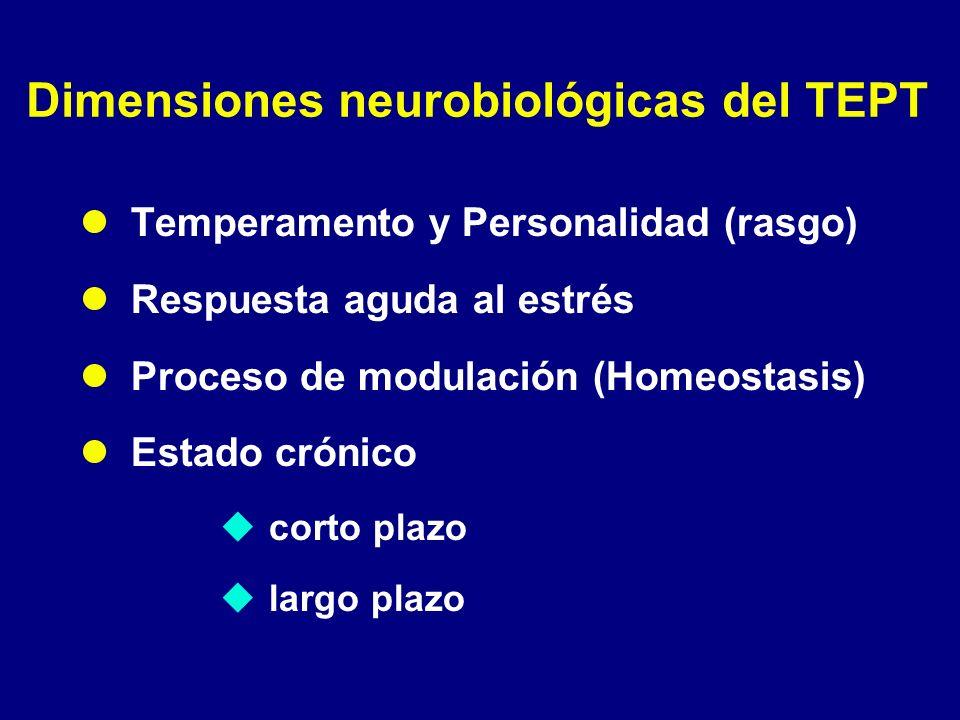 Dimensiones neurobiológicas del TEPT Temperamento y Personalidad (rasgo) Respuesta aguda al estrés Proceso de modulación (Homeostasis) Estado crónico
