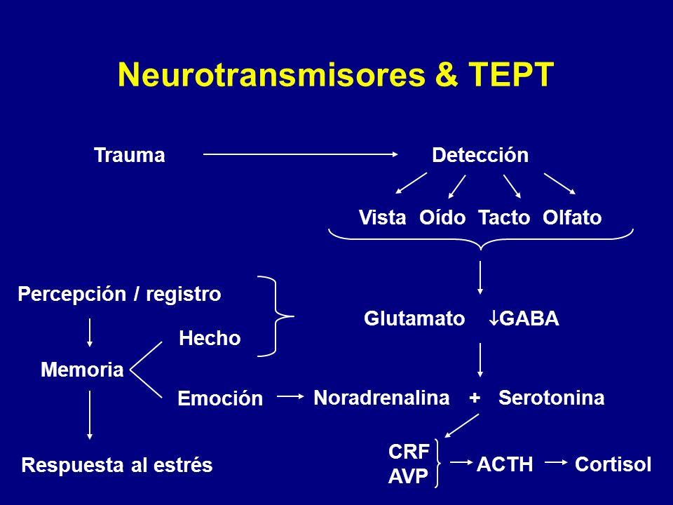 Neurotransmisores & TEPT TraumaDetección Vista Oído Tacto Olfato Glutamato GABA Percepción / registro Memoria Respuesta al estrés Noradrenalina + Sero