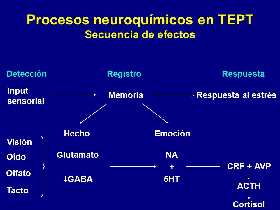 Procesos neuroquímicos en TEPT Secuencia de efectos DetecciónRegistroRespuesta Input sensorial MemoriaRespuesta al estrés HechoEmoción CRF + AVP ACTH
