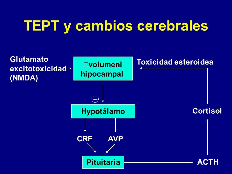 TEPT y cambios cerebrales Glutamato excitotoxicidad (NMDA) volumenl hipocampal Hypotálamo CRFAVP Toxicidad esteroidea Cortisol ACTH Pituitaria